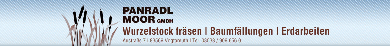 Wurzelstock fräsen, Baumfällungen, Erdarbeiten – Panradl Moor GmbH – Bad Aibling – Rosenheim